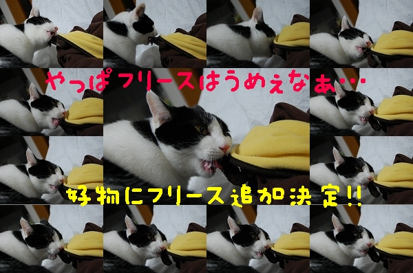 c0181639_181429.jpg