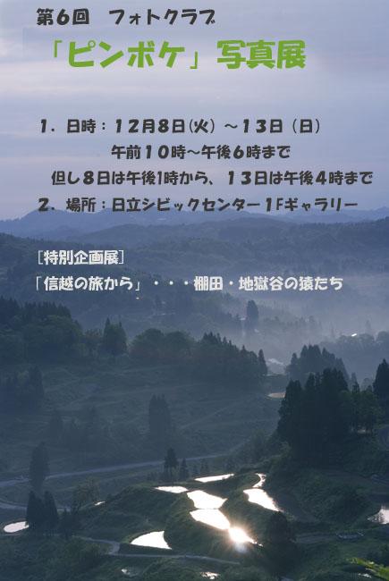 f0089349_1674633.jpg