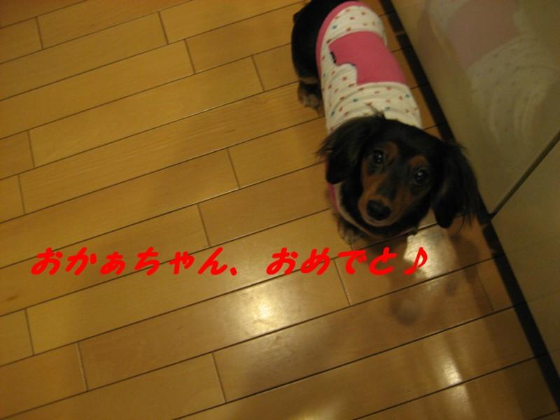 b0160052_160933.jpg