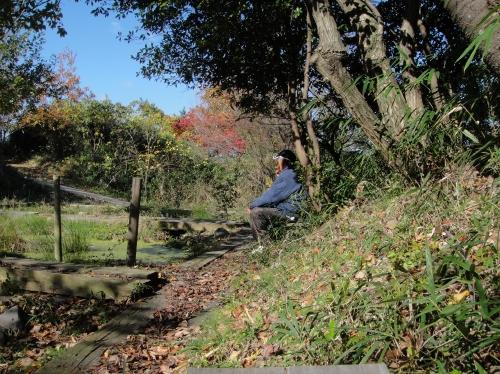 うみべの森の黄葉  by  (TATE-misaki)_c0108460_1664539.jpg