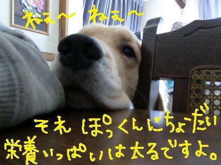f0176830_20121697.jpg