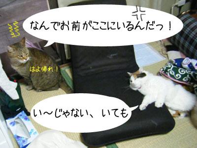 f0008935_924763.jpg