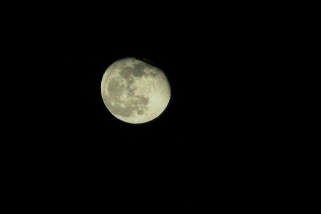 きれいな月夜_a0135756_18404915.jpg