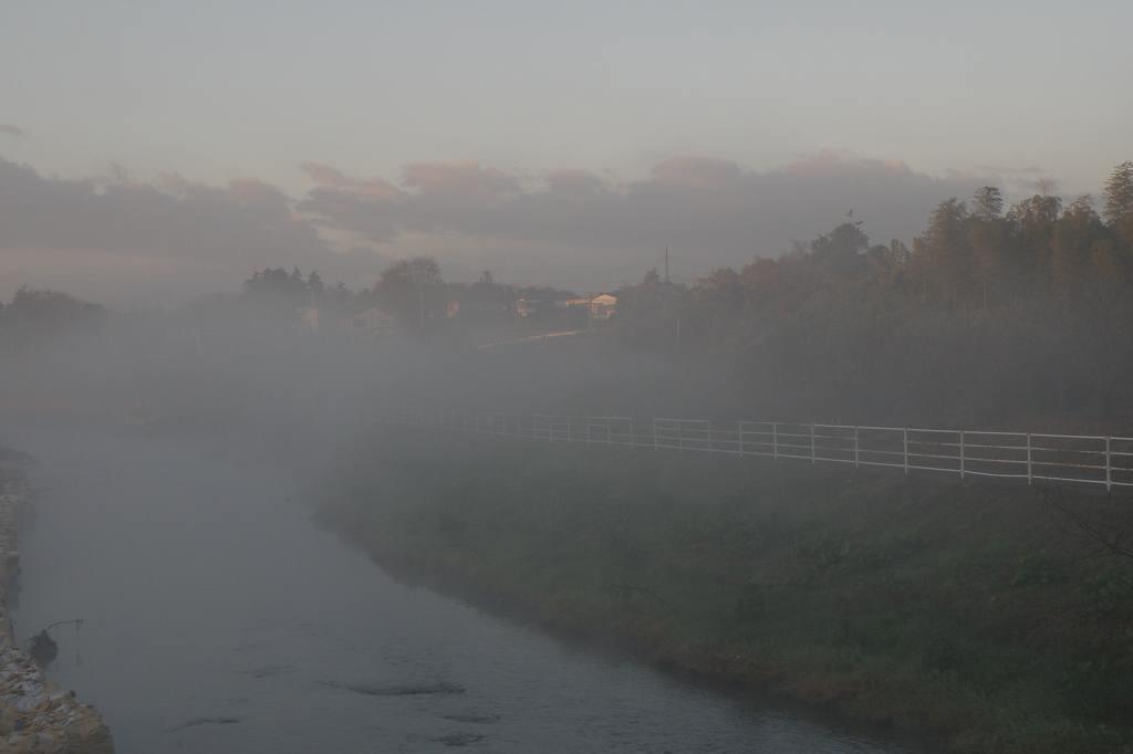 川霧の季節です/重機とカワセミ_b0024798_11512760.jpg