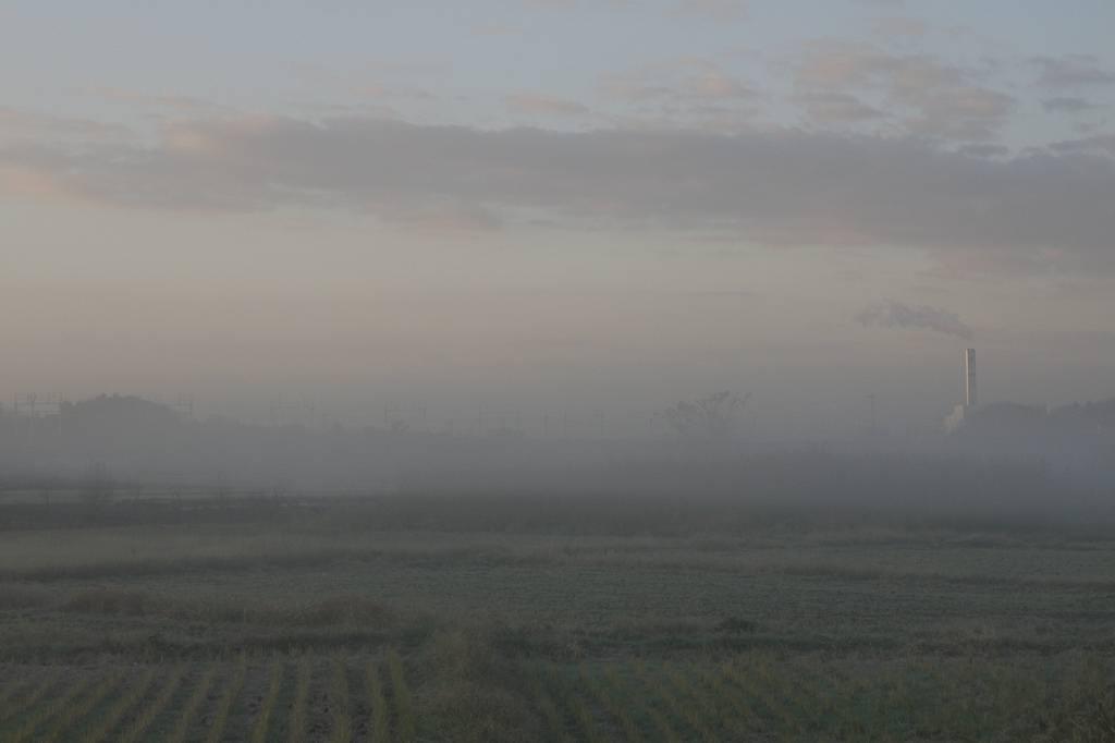 川霧の季節です/重機とカワセミ_b0024798_11513828.jpg