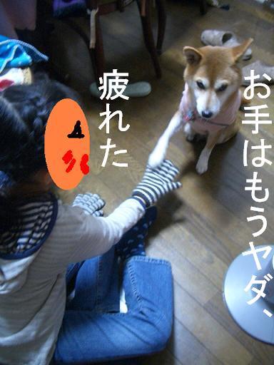 f0024310_2012255.jpg