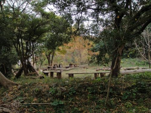 うみべの森の冬景色   by  (TATE-misaki)_c0108460_1425195.jpg