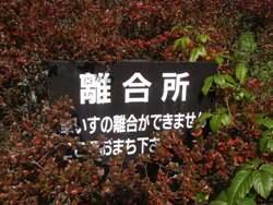 f0159270_22452691.jpg