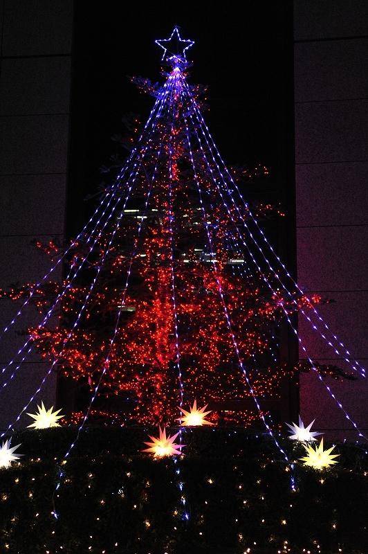 Tokyo Night  in Winter ISO6400World_f0050534_1085059.jpg