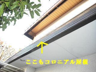 f0031037_2112780.jpg