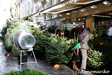 クリスマスツリーの夢の夢_c0024345_2191720.jpg