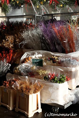 クリスマスツリーの夢の夢_c0024345_2195299.jpg
