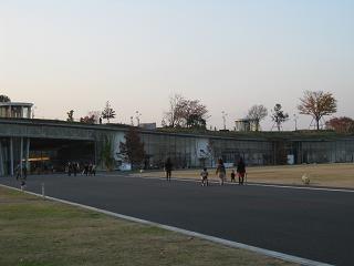 東京インターナショナル フラワー&ガーデンショー2010_e0128446_1620422.jpg