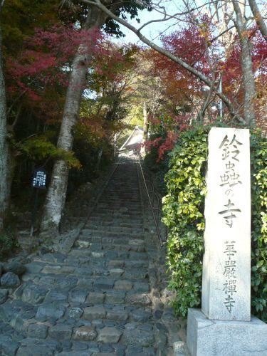 鈴虫寺&大根焚き_d0078486_6463832.jpg