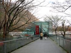 紅葉のころのポーラ美術館 ― エントランスまわり_d0138618_12492952.jpg