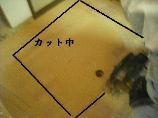 f0031037_18493096.jpg