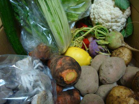 貯蔵野菜20種_e0149596_2352628.jpg