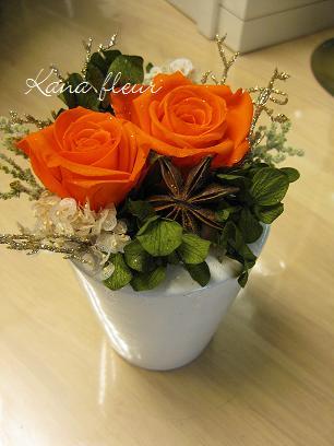 感謝_e0176103_1849647.jpg