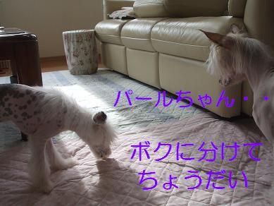 f0179203_17244564.jpg