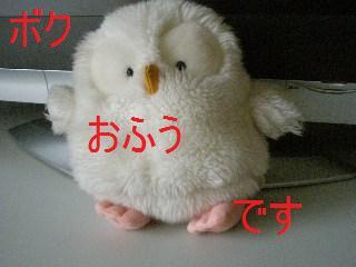 c0205806_18242562.jpg