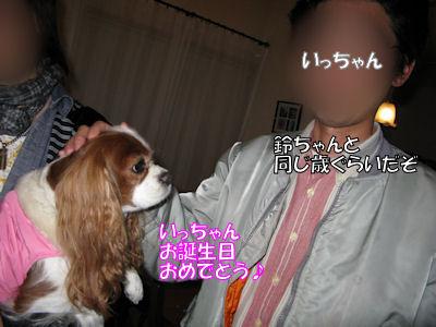 b0185323_170628.jpg