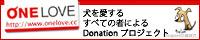 c0117239_813843.jpg