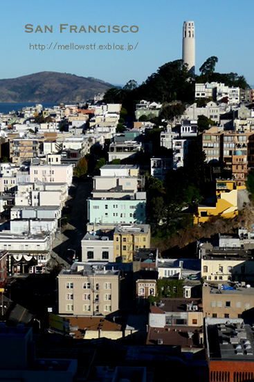 サンフランシスコの昼と夜。_d0124248_15242258.jpg
