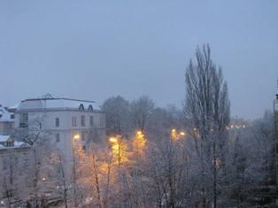 雪_e0116763_16114548.jpg