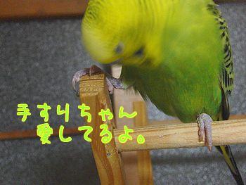 f0196665_0355484.jpg