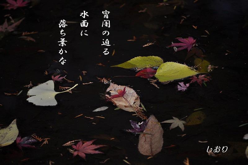 往く季節に・・・<歌>_c0187781_21385237.jpg