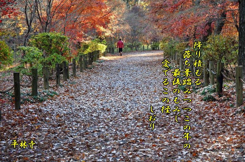 往く季節に・・・<歌>_c0187781_935430.jpg