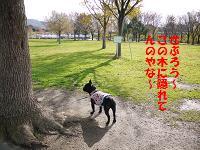 c0188904_1727613.jpg