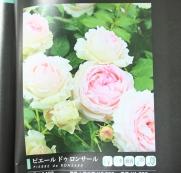 f0159815_22344487.jpg