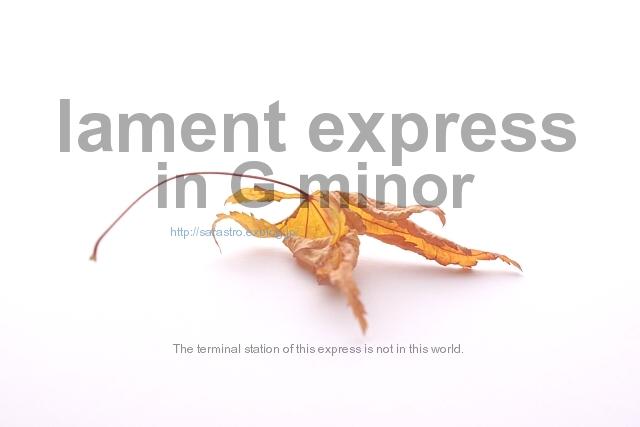 lament express_e0028416_1382911.jpg