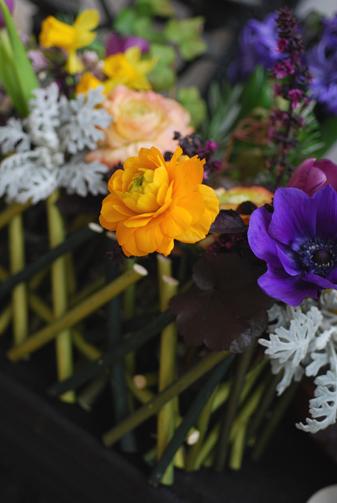 春のお花をラッピング_f0179528_1648485.jpg