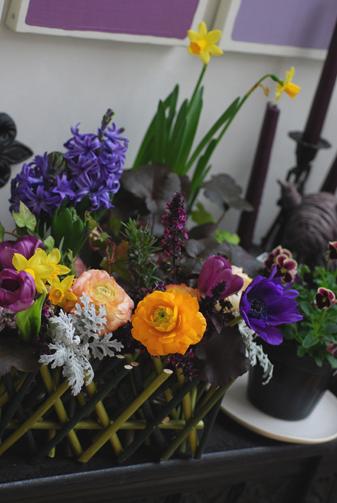 春のお花をラッピング_f0179528_2343378.jpg