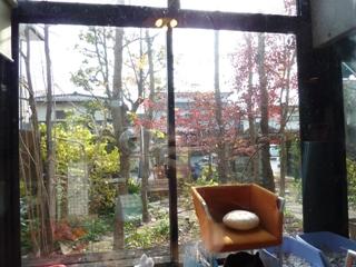 Cafe Gallery Maya 熊本市若葉。_a0143140_101039.jpg