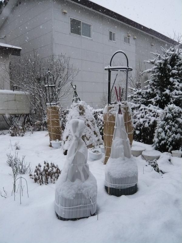 根雪になるでしょう。_f0135269_12382792.jpg