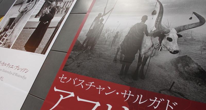 09年12月13日・サルガド最終日_c0129671_21443811.jpg