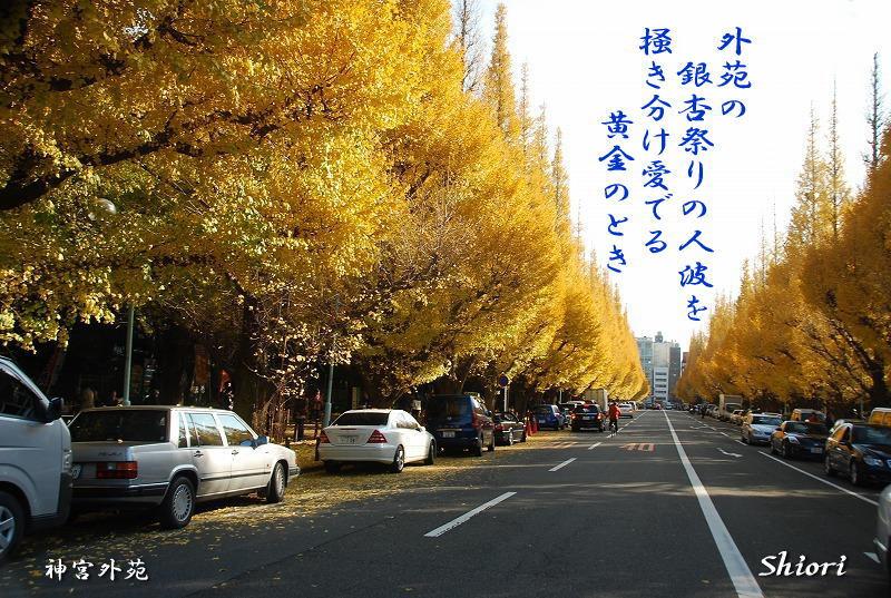 往く季節に・・・<歌>_c0187781_21101346.jpg