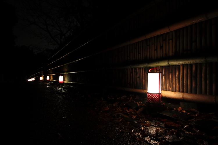 嵐山花灯路 -嵯峨野竹林-_e0051888_2102672.jpg