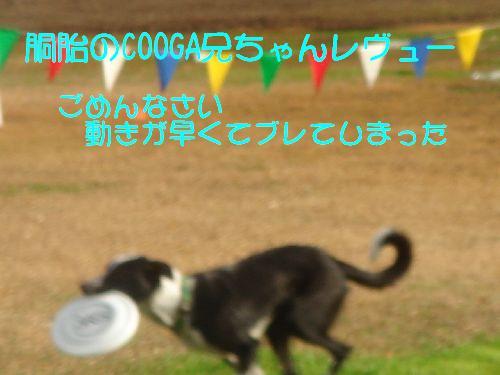 b0101991_2349620.jpg