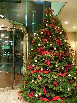 クリスマスツリー♪_b0105897_151511.jpg