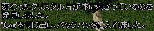 c0184233_1415231.jpg