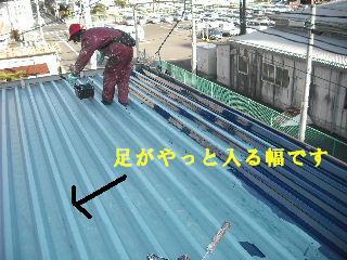 賃貸物件・屋根塗装と浴室リフォーム工事中_f0031037_19143227.jpg
