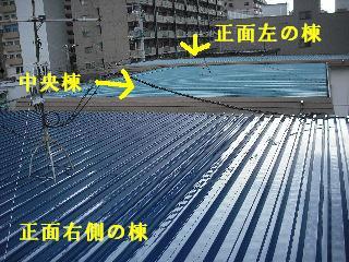 賃貸物件・屋根塗装と浴室リフォーム工事中_f0031037_19155925.jpg