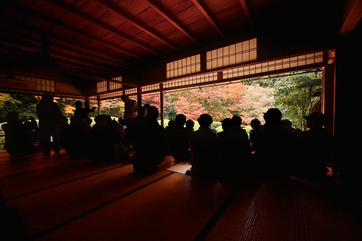 京都スナップ  8_f0021869_2123026.jpg