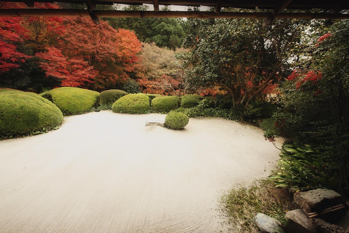 京都スナップ  8_f0021869_2131490.jpg