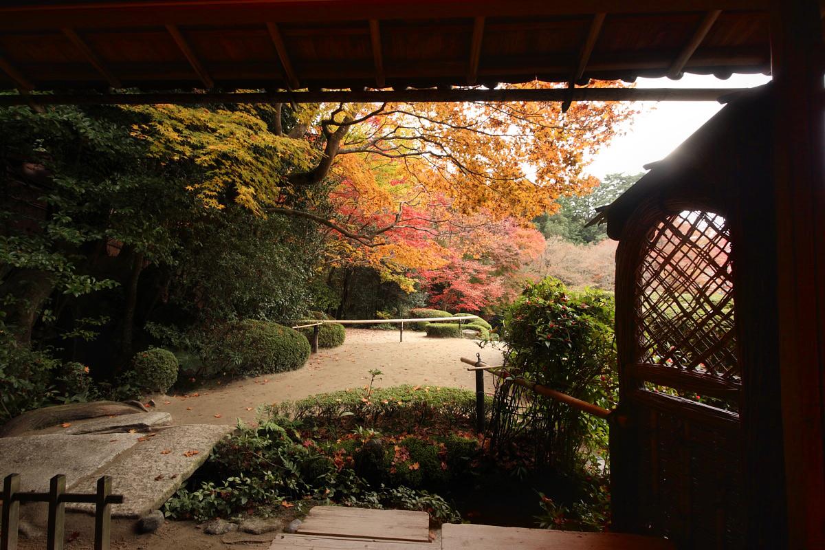 京都スナップ  8_f0021869_213281.jpg