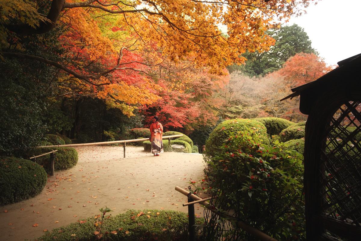京都スナップ  8_f0021869_2133035.jpg